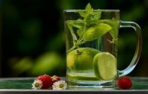 mit Zitronenwasser Kalorien sparen