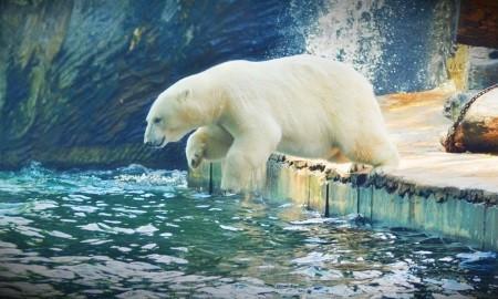 eine kalte nasse abkuehlung kann ein toller natürlicher energiebooster sein