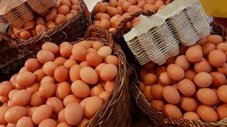 Zu viele Eier mit zu viel Eiweiß