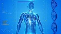 Es gibt diverse Ursachen für Verspannungen und Schmerzen im Rücken