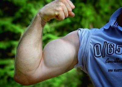 schnellere Zuwächse und prallere Muskeln dank Creatin Monohydrat und ausreichend Protein