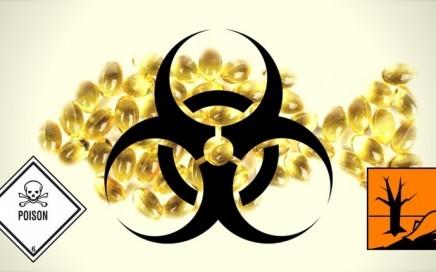 Schwermetalle und Krankheitserreger im Fischöl – So gefährlich sind Omega 3 Supplemente