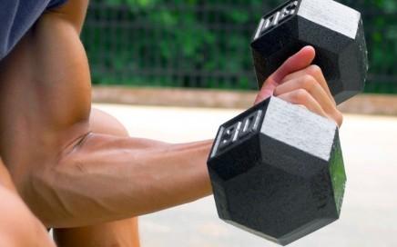 Isolationsübungen effektiv für Deinen Muskelaufbau einsetzten