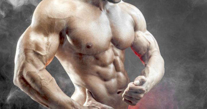 Effektiv Muskelmasse aufbauen - Worauf es beim Muskelaufbau wirklich ankommt