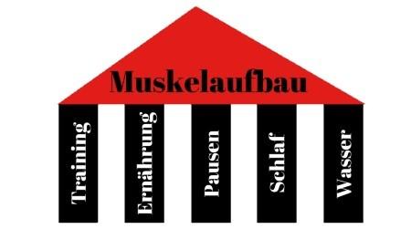 Muskelmasse aufbauen - Die 5 Erfolgsfaktoren für effektiven Muskelaufbau
