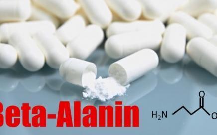 Beta-Alanin - Wirkung, Nebenwirkungen und die richtige Einnahme