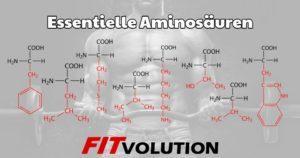 Essentielle Aminosäuren - So deckst Du Deinen Bedarf