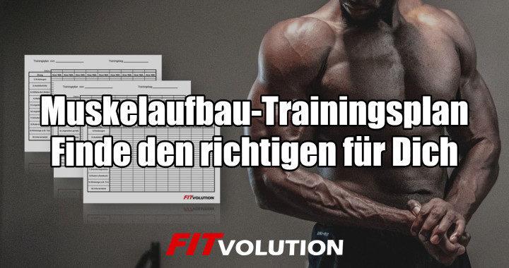 Muskelaufbau-Trainingsplan - finde den richtigen für Dich