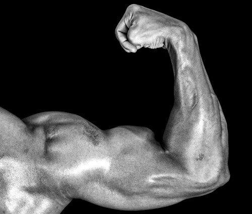 Diese Kurzhantel-Übungen helfen Dir auf dem Weg zu einem dicken Bizeps