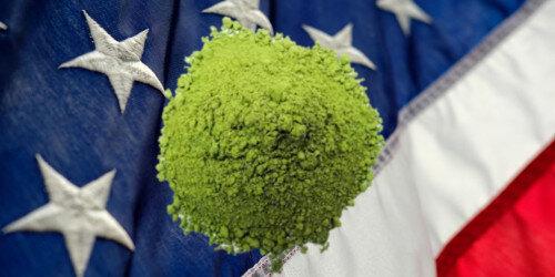 Greens-Gemüsepulver der Trend aus den USA