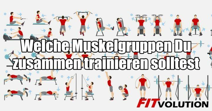 Welche Muskelgruppen Du zusammen trainieren solltest